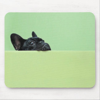 French Bulldog Puppy Peering Over Wall Mouse Pad