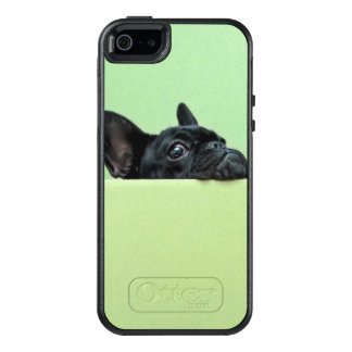 French Bulldog Puppy Peering Over Wall OtterBox iPhone 5/5s/SE Case