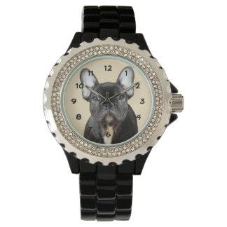French Bulldog Puppy Watch