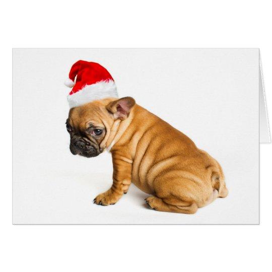 French bulldog puppy wearing a Santa Claus hat