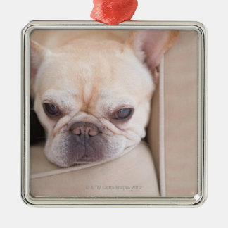 French bulldog resting on sofa christmas ornament