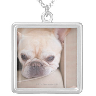 French bulldog resting on sofa silver plated necklace