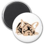 French Bulldog rose Fridge Magnets
