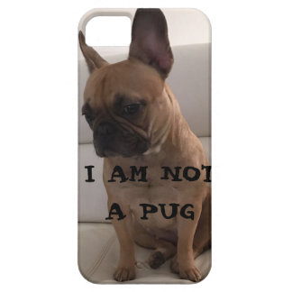 FRENCH BULLDOG ,SE + iPhone 5/5S, Barely There Case For The iPhone 5