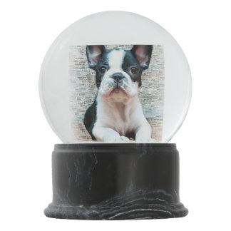 French Bulldog Snow Globes