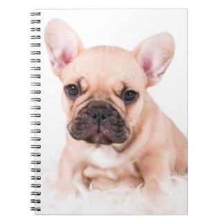 French bulldog. spiral notebook