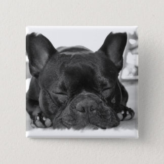 French Bulldog Square Pin