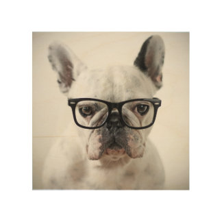 French Bulldog Wearing Black Eye Glasses Wood Print