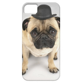 French bulldog wearing bowler, studio shot case for the iPhone 5