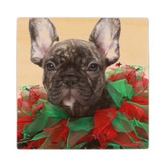 French bulldog wearing Christmas collar Wood Coaster
