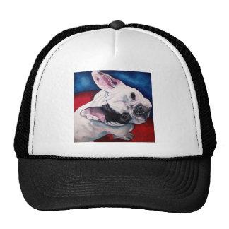 French Bulldog, White and Black Cap