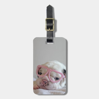 French bulldog white cub Glasses, lying on white Luggage Tag