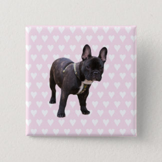 French Bulldog white & pink hearts pin, button