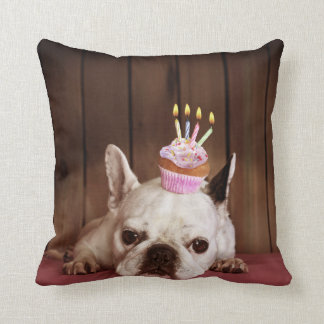 French Bulldog With Birthday Cupcake Cushion