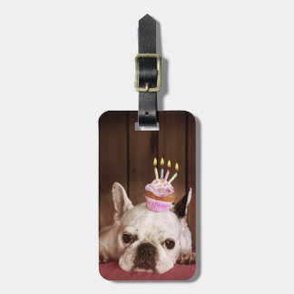 French Bulldog With Birthday Cupcake Luggage Tag