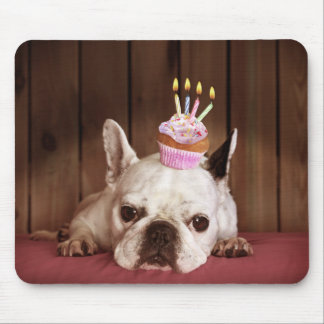 French Bulldog With Birthday Cupcake Mouse Pad