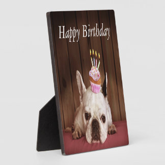 French Bulldog With Birthday Cupcake Photo Plaques