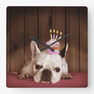 French Bulldog With Birthday Cupcake Wallclocks