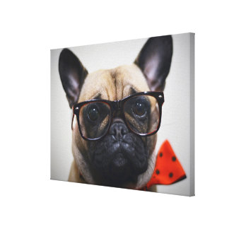 French Bulldog With Glasses And Bow Tie Stretched Canvas Print
