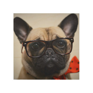 French Bulldog With Glasses And Bow Tie Wood Wall Art