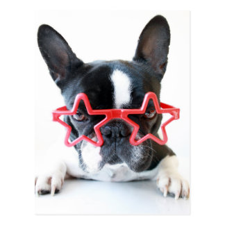 French Bulldog With Red Star Glasses Postcard
