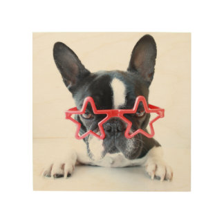 French Bulldog With Red Star Glasses Wood Print