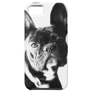 French Bulldogge iPhone 5 Cover