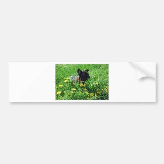 French Bulldoggen autosticker Bumper Sticker
