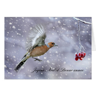 french christmas card with chaffinch in flight to