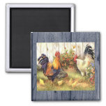 French Country Roosters/Baby Chicks Fridge Magnet