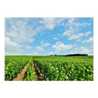 "French Countryside 28"" x 20"" Poster"