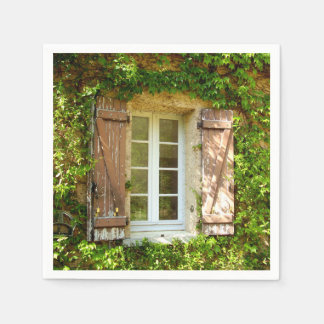 French Farmhouse Window & Shutters Paper Napkins