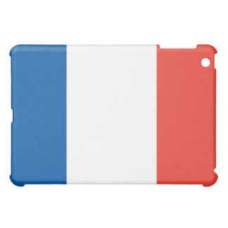 French Flag  iPad Mini Case