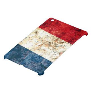 French Flag iPad Mini Covers