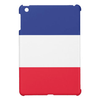 French Flag Case For The iPad Mini