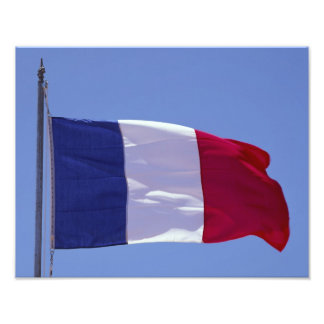 French flag photo art