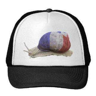 French flag snail cap