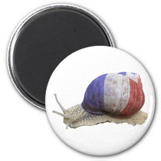 French flag snail magnet