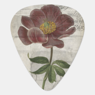 French Floral I Plectrum