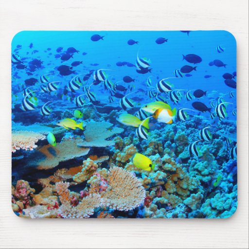 French Frigate Shoals reef with fish. Mouse Mat