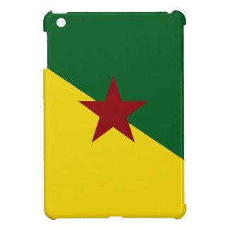 French Guiana Flag iPad Mini Case