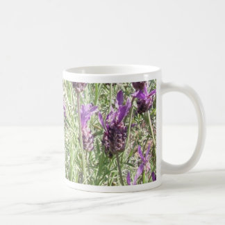 French Lavender Flowers Mugs