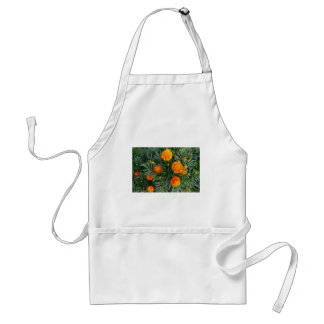 French Marigolds Standard Apron