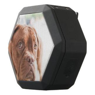 French Mastiff Black Boombot Rex Bluetooth Speaker