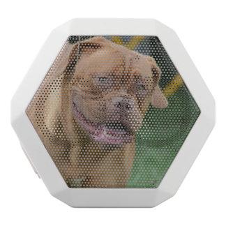 French Mastiff Dog White Boombot Rex Bluetooth Speaker