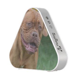 French Mastiff Dog Bluetooth Speaker