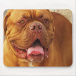 French Mastiff Mouse Pad