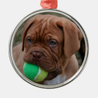 French Mastiff Puppy Christmas Ornament