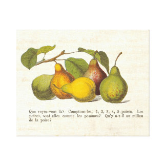 French Pears for a Country Kitchen Canvas Prints