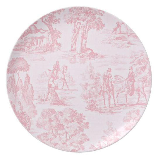 French Pink Toile de Juoy Pattern Vintage Party